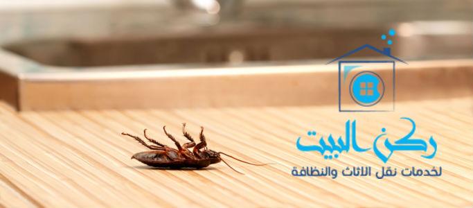شركات-مكافحة-حشرات-بالطائف